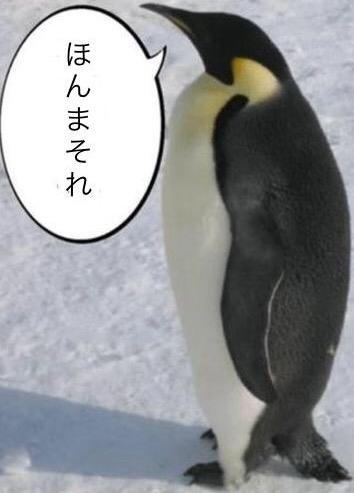 肯定ペンギン